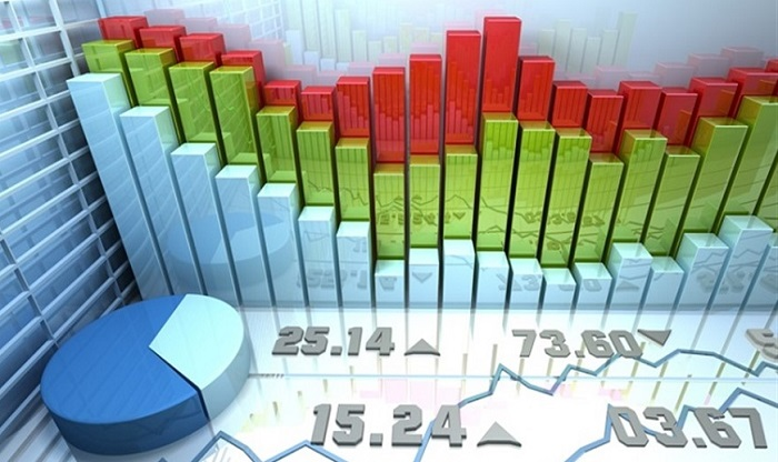 Yatırım Alanları Hakkında Kısaca Bilgi